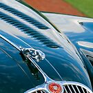 Jaguar XK 150 by Jill Reger