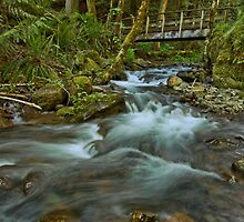 Fall Creek by LucyAbrao