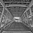 Over Seine. by Victor Pugatschew
