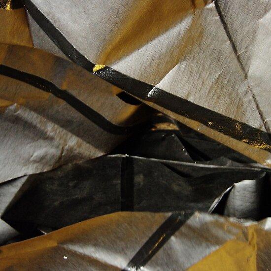 Golden black by Bluesrose