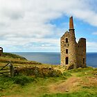 Wheal Owles Engine House, Cornwall by hootonles
