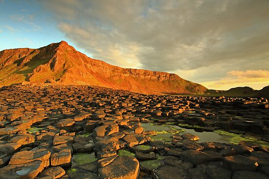 Giants Causeway, N.Ireland  by Fred Taylor