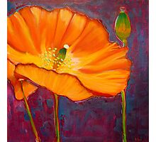 Poppy dance, mixed media on canvas Photographic Print