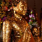 Buddha in Gold by Drew Walker
