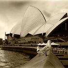 Opera House by Drew Walker