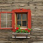 Small But Beautiful Window by Lee d'Entremont