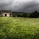 Aysgarth Barn #1 by David Robinson