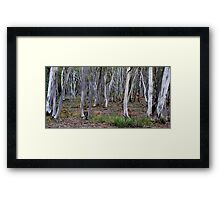 HILL END TREES Framed Print