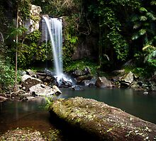 Curtis Falls, Mt Tamborine, QLD. by lu138