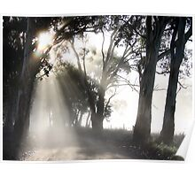 ~ Sun Burst ~ Poster