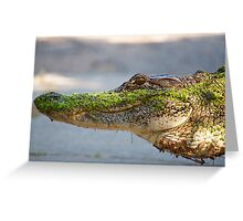 Gator up Close and Personal Greeting Card