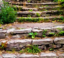 Old Stone Steps by Joy  Rector