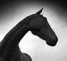 Horse (38-10) by Raymond Kerr