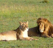 Mum & Dad on the Serengeti by Braedene