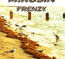FRENZY by miriamrusin