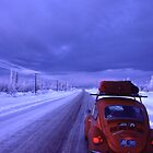 The Alaska Highway in February by Harry Snowden