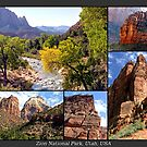 Zion National Park, Utah, USA by RichardKlos