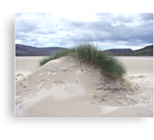Sand Dune with Mohican Haircut - Western Isles Canvas Print