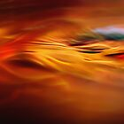 heat waves, fire water by Gerry Daniel