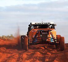 Car 124 - Finke 2011 Day 1 by Centralian Images