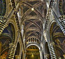Duomo-Siena by Antonio Zarli