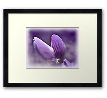 Purple Diva Framed Print
