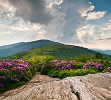 Vistas - Blue Ridge Landscapes by Dave Allen