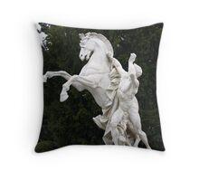 Man & Horse Throw Pillow
