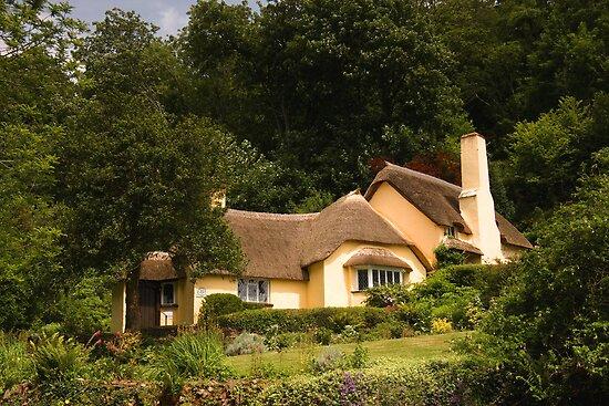 Selworthy Village Shop, Exmoor by David-J