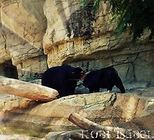 Black Bears by candysweets228