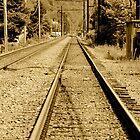 Tracks to Where  by Harry Blum