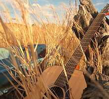 Tunes in the Field - NSW, West Cambewarra. by Jameus