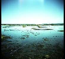 Coast #02 by PetroniusArbit