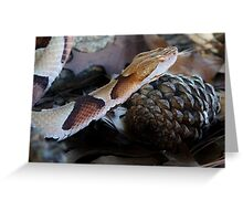 Slither and Slide Greeting Card