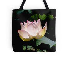 Lotus in the sun Tote Bag
