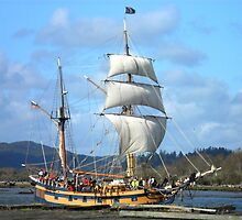 Tall Ships by Annie Comfort