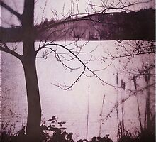 Vintage Rose Lake (Virginia Waters) by Citizen