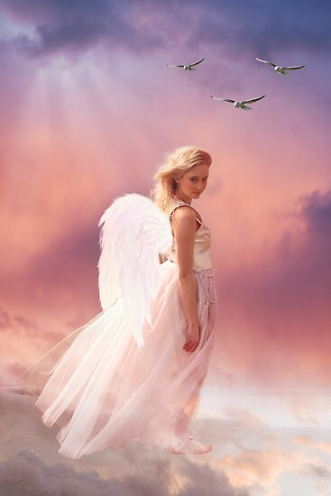 Angel in Pink by Linda Lees