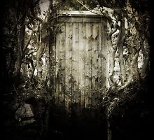 And in the unseen wood there grew a wild door. Now the wild Door answered no key save its own desire, and opened to all places by it's own design. by benamon