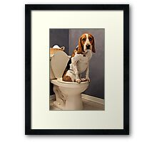 A little privacy please Framed Print