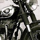 BSA Classic Bike by Lou Wilson