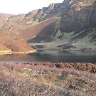 Nire Valley,Sgilloge Lake,#2    Comeragh Mountains,Co.Waterford,Ireland. by Pat Duggan