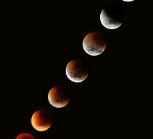 Lunar Eclipse time lapse 2 by Robyn Lakeman