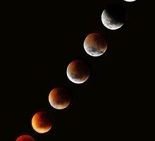 Lunar Eclipse time lapse 2 by Robyn Lakeman