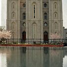 Salt Lake Temple - Vertical by Ryan Houston