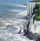 Bempton Cliffs by Sue Nichol