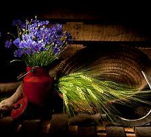 Summer Field Still life with Cornflower by Ondřej Smolka