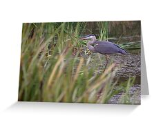Lonely Crane Greeting Card