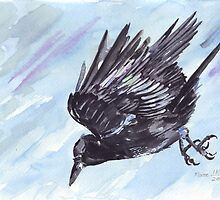 As the Crow flies by Maree  Clarkson