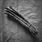 Asparagus by synergymono